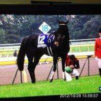 デムーロ騎手は馬から降りて天皇陛下に挨拶しましたが、 しかし、 日本中央競馬会競馬施行規程 (後検量) 第120条 2 前項の規定により負担 重量の後検量を受けな ければならない騎手は、『騎乗したままで検量所に行き』、馬場取締委員の命ずるところに従って下馬しなければならない。  デムーロ騎手は違反を犯してしまいました。 違反した場合は罰金らしいです。  ↑そこで質問致します。 デムーロ騎手は...