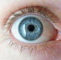 この目の色は何色ですか?   青じゃなくてちゃんとした名前が知りたいです    あと黒人は目の色はだいたいの人が黒なんですか?   茶色じゃなくて、黒ですか?