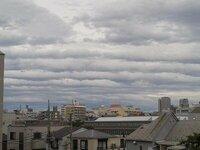 この雲の種類は何ですか? うろこ雲ですか?
