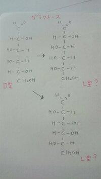 単糖の鎖状構造の異性体の書き方について教えてください。  栄養学初学者の者です。 今、炭水化物の勉強をしているのですが異性体の書き方のことで混乱しています。  ガラクトースの鎖状式 (D型、L型)で書けという問題なのですが 私はD型とL型の判断は、カルボニル基から最も離れた炭素についているヒドロキシ基の向きで判断する、と習いました。 なので、例えばガラクトースの場合は5番炭素に...