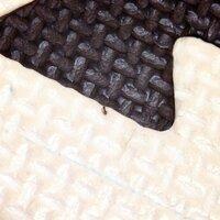 この蟻はなんという蟻なのでしょうか? とても小さいアリです。 家の中に上がりこんでいるので害があるのか心配で調べたいのですが名前が分かりません(>_<)