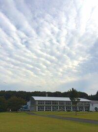 至急お願いします! これは鱗雲ですか?それともいわし雲?さば雲? それともこの3つとは違う羊雲ですか  どれも似てて見分けがつかなくて.... 雲に詳しい方至急お願いします!