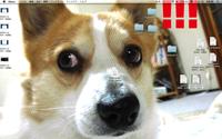 Macbook proについて質問です。 先日より画面上に緑色のノイズが出たり消えたりするようになりました。 画面設定は特に変更していません。 またブラウザやホーム画面関係なくノイズが走ることからソフトウェア...
