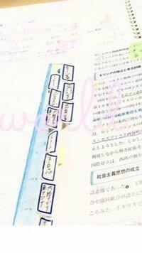 この画像にある教科書などの参考書の横につける付箋?のようなものの名前はなんと言いますか?
