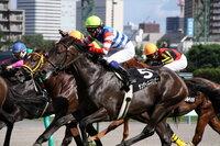 賭け事 競馬、競輪、競艇、パチンコ等  する人ってどういう印象を持ちますか?