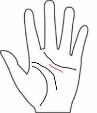 私の手相はざっとこんな感じになっているのですが、この赤い線の部分はなんなのか分かりません。 この線はなんなのでしょうか?