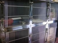 8/7 最愛の猫ちゃんが亡くなりました。  ある動物病院には、下の画像のような猫舎、24時間監視モニターと録画器材があります。 猫舎には酸素吸入器を入れていたようですが、この画像からどのように酸素を投入し...