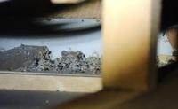 天井裏にあった堆積物。。 これは動物の糞でしょうか?