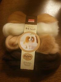 ダイソーで羊毛フェルトの犬のやつを買ったのですが、目とか付いてないのですか?ニードルは付いてないのは書いてあったので分かりますが、フェルトしか入ってませんでした。
