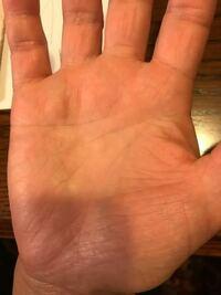 ホロボックル様 今日、母親の右手の写真を撮りました(母親は右利きです)。 お時間がある時に手相を見ていただきたいです。 よろしくお願いします。