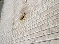 賃貸住宅の退去についてです。 ここ最近、賃貸アパートの屋根裏や壁の中に鳥の巣を作られて困っています。 鳥の種類はムクドリだと思います。 朝はカタカタ歩く音と羽ばたく音。それに雛鳥の 鳴き声。近くでギャーギャーと鳴く親鳥。 音だけならまだしもダニ被害もひどいです。 窓際にはダニが目に見えるほど大量発生。 夜は痒くて眠れませんし、気持ち悪くて部屋にも帰りたくありません。 どうやって...