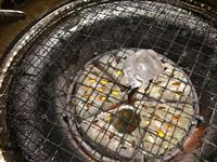 焼肉の網に氷を置きます。 氷が溶けます。 氷を置いた部分の網は冷たくなっているのでしょうか?(氷が上に乗っている間)