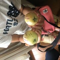 家庭菜園 祖母がマンションのベランダで育てました。 この実はなんでしょう  ミニトマトの様な実のつき方で育っています。  しかし、実は硬くてリンゴの様です。  ご存知の方教えてくだ さい。  よろしくお願い致します。