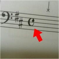 楽譜の頭にある、このCみたいなのはどういう意味ですか? これは特に考えなくてもいい記号ですか?