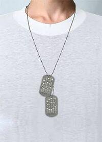 こういうドッグタグ?のネックレスを女がつけてたらどう思いますか?ださい? かっこいい感じのファッションだったらok??