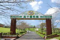 高千穂牧場は宮崎県西臼杵郡高千穂町ではなく、都城市にあるということを知っていましたか? 間違って前者に行ってしまった人はいませんか?