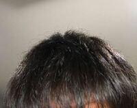 画像のような枝毛に悩んでいます。 男です。 シャンプーもリンスも市販のものではなくパサつきを抑えるようなものを使用しています。 画像ような髪を改善しサラサラな髪にする方法を教えてください