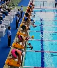 競泳のスタート時、この画像のように別の選手がいるのですが、これは何をする人なのでしょうか?