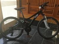 僕の自転車のダサいところを述べてください。