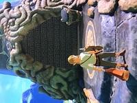 ゼルダの伝説ブレスオブザワイルド 最初の祠マオーヌの祠にはいれません 動画、解説をみるとシーカーストーンをかざすとあります シーカーストーンは入手しておじいさんの話をききマップ上に 祠は表示されてま...