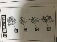 コトブキヤのエヴァの胴体の組み立てなんですが、 23と24のつなぎ方が分かりません。教えて下さい。