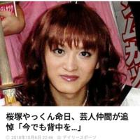 桜塚やっくんをどう思いますか?(真面目にお願いします)