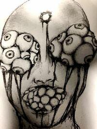 顔 穴 ギネス