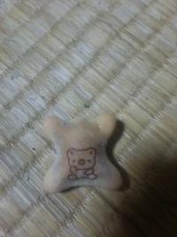 コアラのマーチを食べていたのですが、これは何コアラですか?