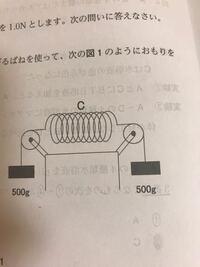 中3 力のつりあいです。 100g1N 1N 1センチ  とした時このバネは何センチのびますか?