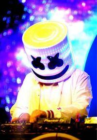 DJのマシュメロってどのくらい人気なの?