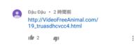 Youtubeのコメント欄に貼られていたリンク(多分アダルトサイト)を誤タップで踏んでしまいました。すぐに戻って、履歴やキャッシュは消したんですけど、大丈夫ですか?他にやった方が良いこととかありますか?