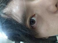 この眼は桃花眼ですか?