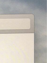MacBookのディスプレイの右半分に薄い横線がはいるようになりました。 写真では少し見づらいですが、0.5ミリ間隔で薄い灰色の線が上から下まではいっています。画面全体ではなく、右半分だけです。 気づいてから...