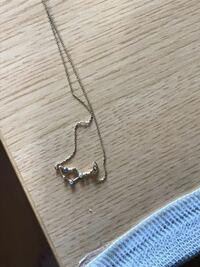 このネックレスのモチーフになっている星座はなんですか?