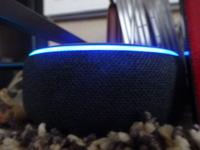 Amazonのエコードットがずっと青く光ってくるくる回っています。アレクサと言っても反応してくれません。故障でしょうか?