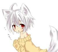 狐はイヌ科だから 鳴き声はワンワン ですか? コンコンとは鳴かないですよね?