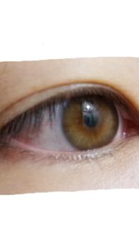 目の色について ブラウン、ヘーゼル、アンバーなど  どれにあたるのでしょう