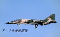 F-1支援戦闘機の画像見てて、思ったことなんですが、何で 翼端にAIM-9/AAM-3用のランチャーがあるのとないのがいるのか気になります。