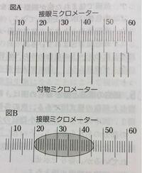 メーター 目盛り ミクロ 接眼 1