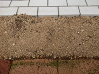 赤玉土を入れた花壇ですが、一部だけ屋根の下なので雨があたりません。ですが、今朝は土が掘られたか、足跡かな?いくつかえぐられています。猫を飼っている人に聞いたら、これは猫ではない。というのですが、これは 何ですかね?