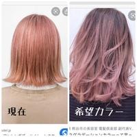 ヘアカラー、カラーバターについて 現在画像左のようなサーモンピンク系のカラーです。 画像右のようなピンクアッシュ系のカラーにしたいのですがどうしたら上手く染まりますか?  1アッシ ュピンクを薄めて塗る 2薄い紫ピンクを作って塗る のどちらかかなと考えております。  なにかほかのやり方やおすすめのやり方がありましたら教えてください。  使用しているカラーバターはエンシェー...
