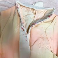 着物や振袖に詳しい方お願いします。 これ半襟縫い付けてありますか?