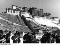 中国のチベット侵攻で、およそ120万人という死者が出たのですか? なんでも、インドにあるチベット亡命政府が中国の人民解放軍の侵攻や支配によって、およそ120万人もの死者を出したと発表していると。 それは真実でしょうか? それとも誇張も入ってそうですかね。 でも、中国政府ですら30万人近くのチベット人不穏分子を掃討したと認めているとか。 それらは何年何月何日の事がご存じの方いますかね。 ...