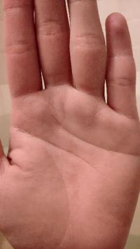 手相の運命線について、画像の手には運命線が無いですが、どういう意味ですか? ニート適性があるということでしょうか?