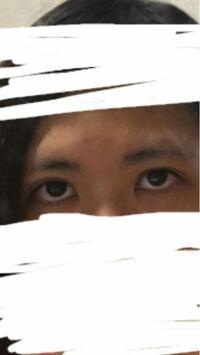 自分の目はつり目ですか? アイライナーを引く時、どの様に描いたら綺麗な目に見えますか?