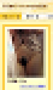 プロフィール画像に不適切な画像を使ったり、プロフィールに不適切な記載をしている利用者知ってますか?