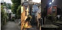 東京区部の谷戸とV字谷の街並みですが、千葉県でこのような坂と階段の街並みはありますか?