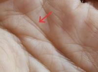 手相について あげまん線と言う線(感情線の終点が三ツに別れている)が右手にはあるのですが、左手の線は上線二つの幅が狭いです。 このように狭い幅でも、あげまん線で間違いないのでしょうか?