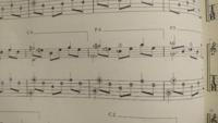クラシックギターの楽譜記号、弾き方の質問です。 画像のように五線の上部に「P.4」「P.5」とあるのはどのような弾き方の指定でしょうか。  隣のC.○はセーハだと思うのですが、同じ書き方でPというのが調べても解らず、楽譜内に注記等もなかったので質問させていただきました。  曲はソルの月光、43~4小節目です。  ご存じの方いらっしゃいましたら教えて下さい。よろしくお願いいたします。