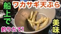 テンカラ釣りと天ぷら釣り、どちらが好きですか?